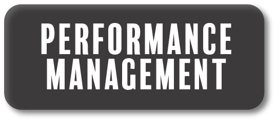 Button for Performance Management Information